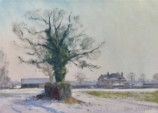 Bright winter light, Perrotts Farm, Banstead  -  7x10